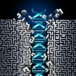 Cartoon of a DNA helix pushing through a maze
