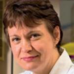 Profile picture of Professor Margaret Ashcroft